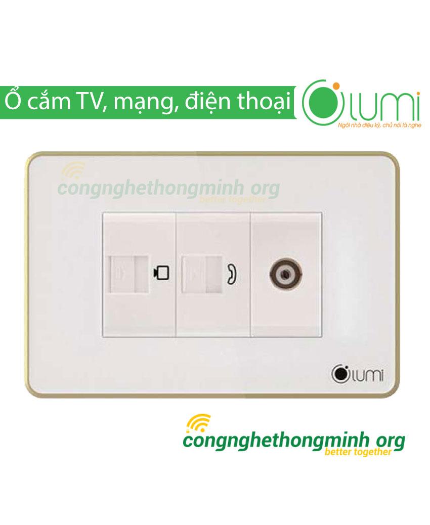 Ổ cắm Tivi, điện thoại, mạng LAN Lumi